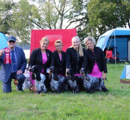 Vår fina uppfödargrupp blev bäst i rasen och BEST IN SHOW i Karlsborg