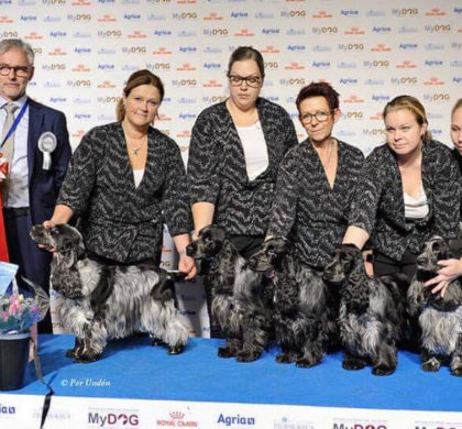 Emma- SE U(u)CH Wavecatcher Magic Euphoria BEST IN SHOW avelsgrupp